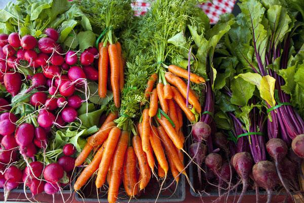 Légumes biologiques en kiosque